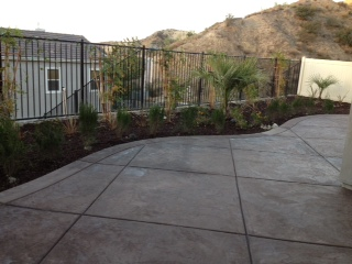Concrete with Landscaping