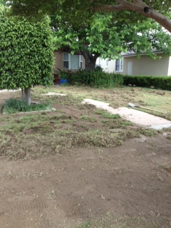 Residential Valley Landscape BEFORE