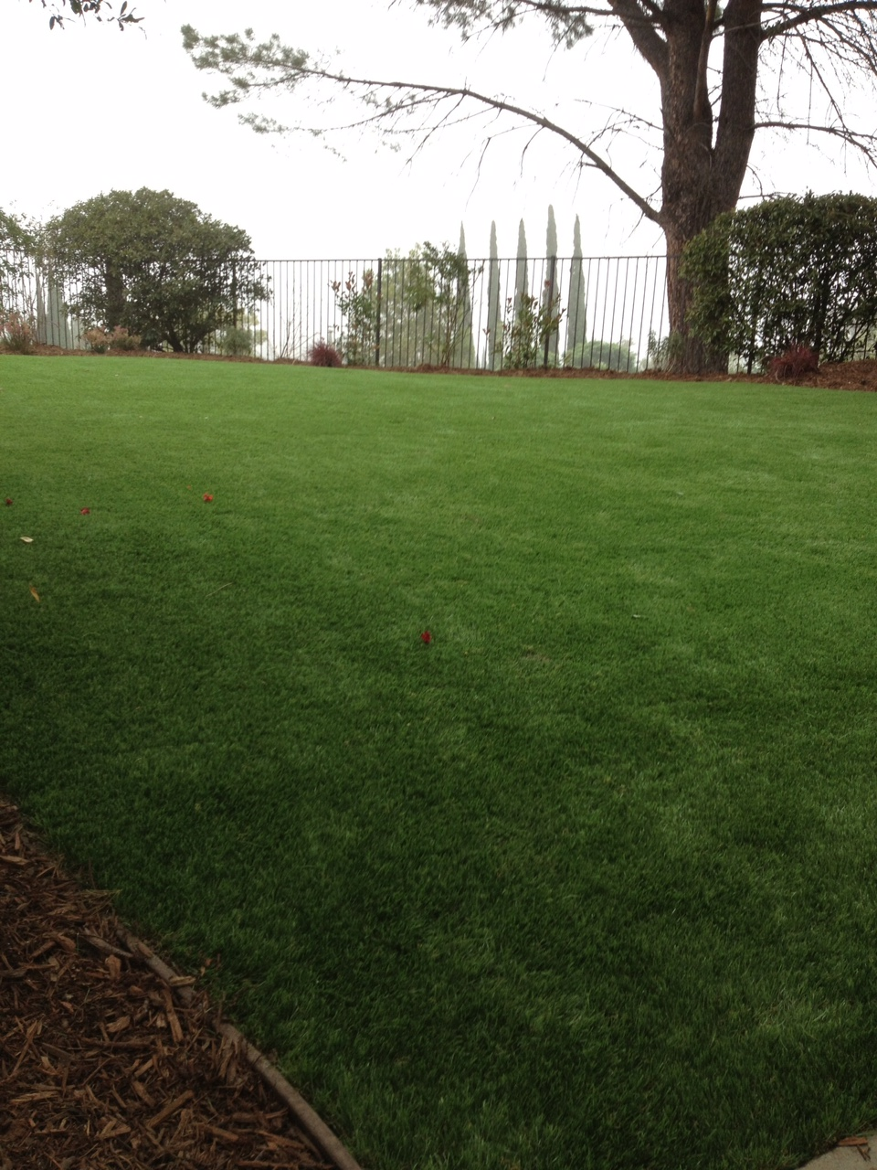 Artificial turf install process - finished, looks real! and very nice