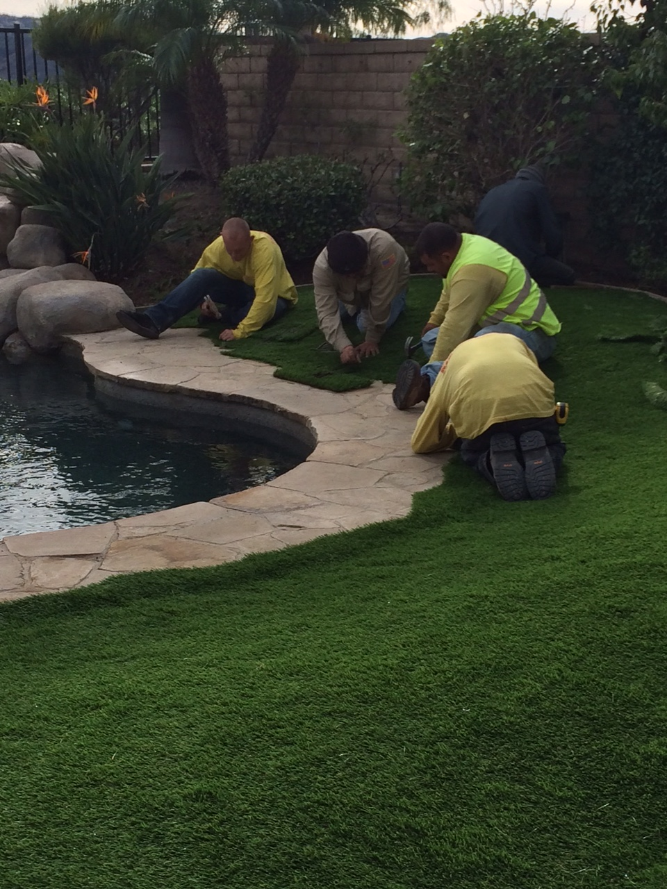 Artificial turf the guys installing it