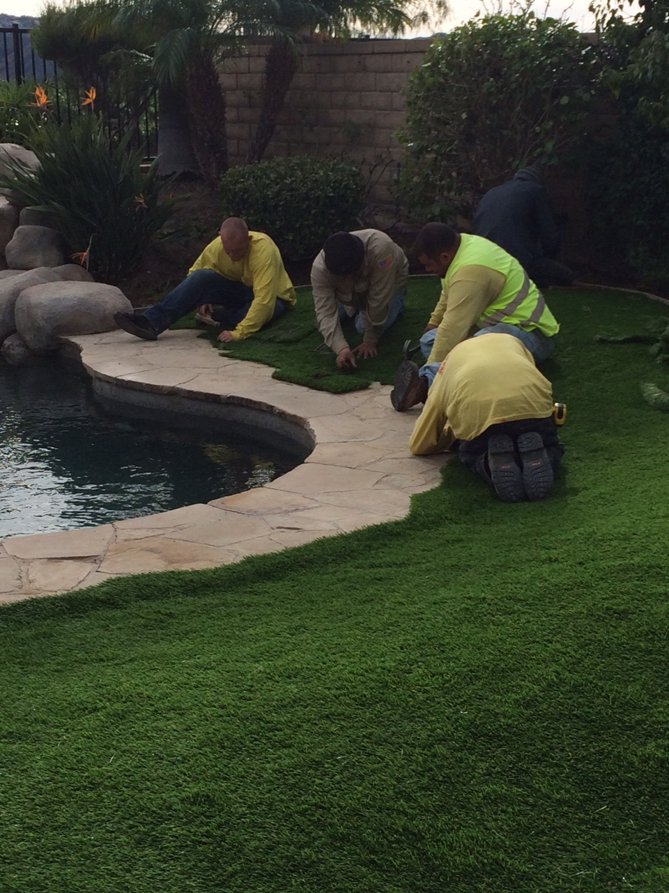 Turf - now we are installing it around a pool