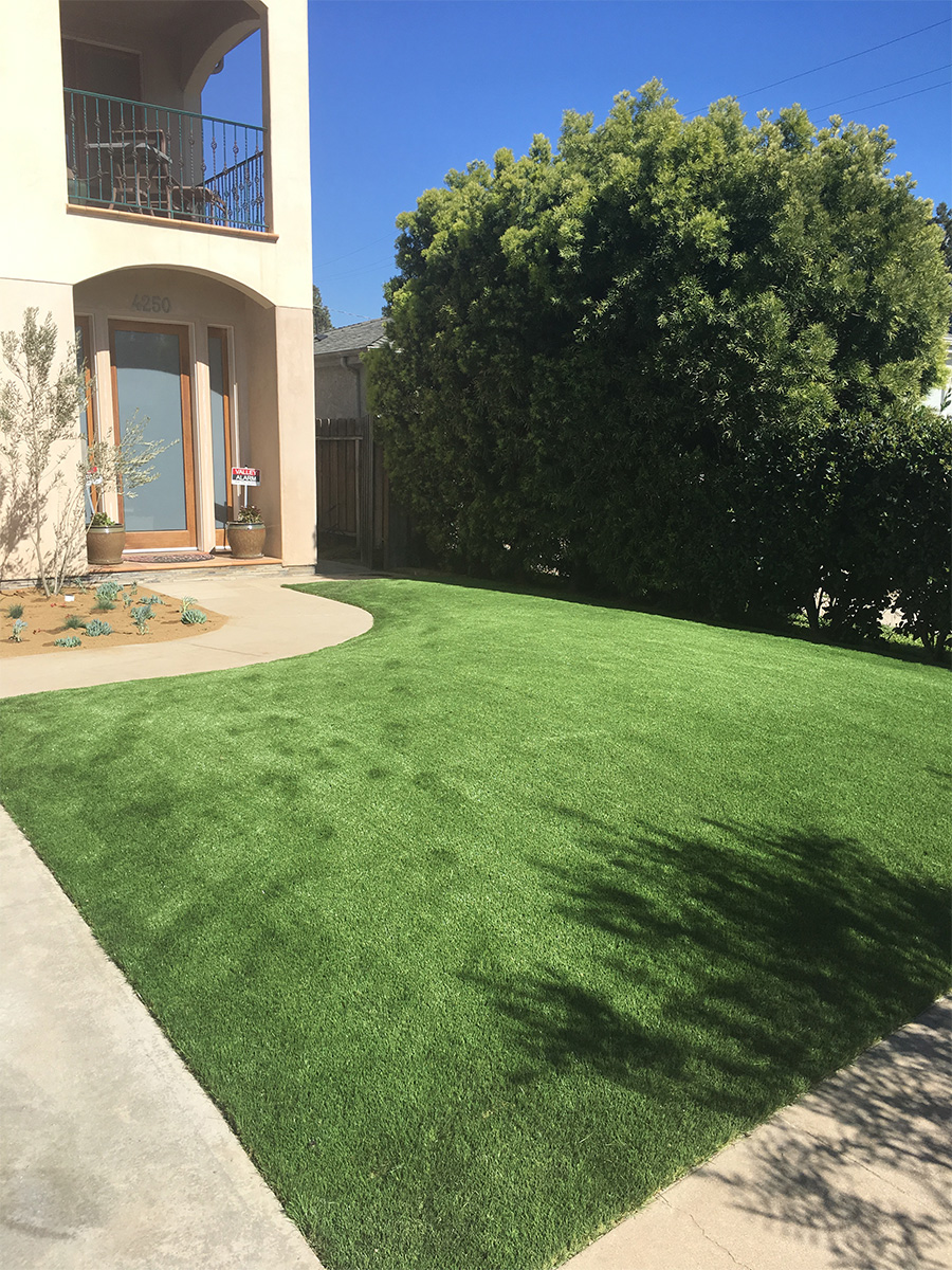 Turf-in-the-front-yard